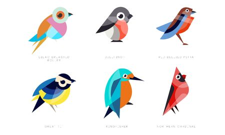 Colorful Stylized Birds Collection, Lilac Breasted Roller, Bullfinch, Red Bellied Pitta, Great Tit, Kingfisher, Northern Cardinal Vector Illustration Isolated on White Background.