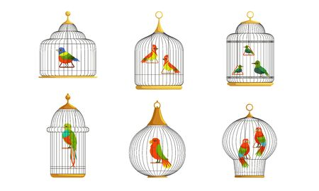 Colorful Parrots in Cages Collection, Cute Birds in Birdcages Vector Illustration on White Background