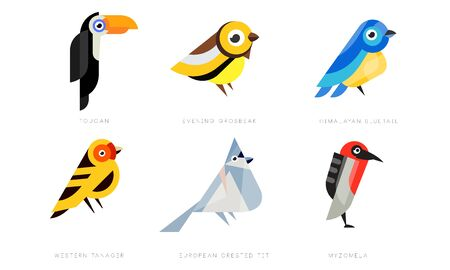Colorful Stylized Birds Collection, Toukan, Evening Grosbeak, Himalayan Bluetail, Western Tanager, European Crested Tit, Myzomela Vector Illustration on White Background
