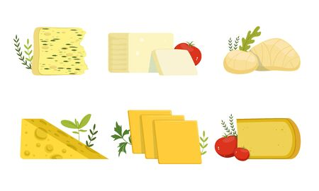 Various Types of Cheese Collection, Delicious Fresh Dairy Products Vector Illustration Isolated on White Background.