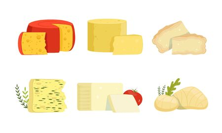 Various Varieties of Cheese Collection, Delicious Fresh Dairy Products Vector Illustration Isolated on White Background.