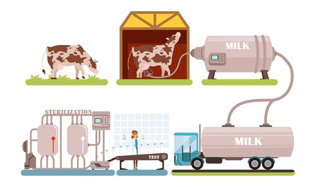 Industrial Production of Milk Set, Processing of Natural Dairy Product Steps Vector Illustration Isolated on White Background. Illustration