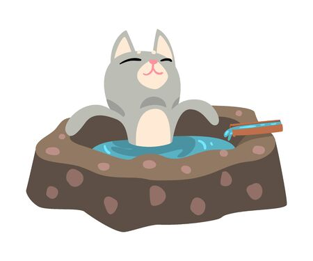 Funny Grey Cat Taking an Onsen Bath Outdoor, Cute Pet Animal Enjoying Spa Procedure Vector illustration on White Background.