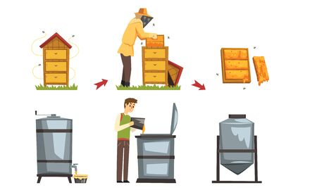Honey Production Process, Beekeeper Harvesting and Preserving Natural Product Vector Illustration Vecteurs