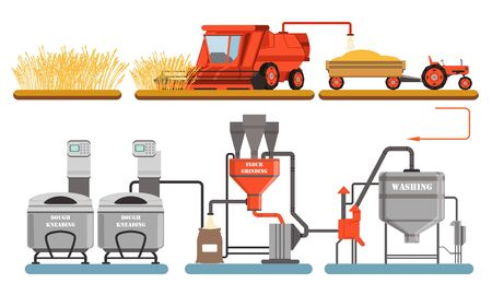 Bread Production Process, Harvesting, Washing, Flour Grinding, Dough Kneadling Automated Line Vector Illustration Vectores