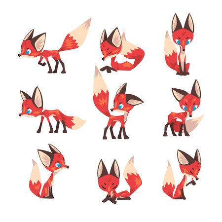Cute Little Fox Collection, Fluffy Blue Eyed Wild Forest Animal Cartoon Character in Various Poses Vector Illustration Çizim