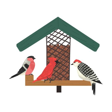 Winter Bird Feeder, Northern Birds Feeding by Seeds in Wooden Feeder, Cute Red Cardinal, Chickadee, Sparrow, Woodpecker Vector Illustration on White Background.