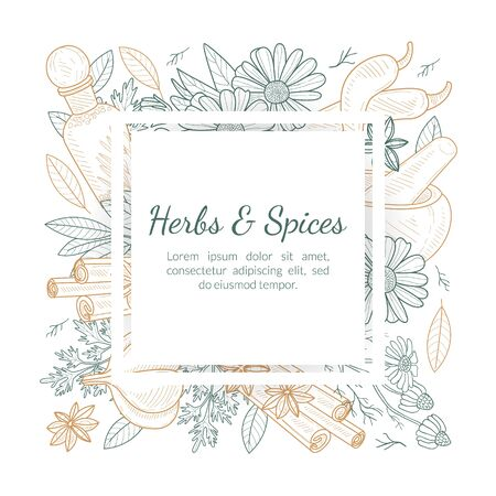 Herbs and Spices Banner Template with Natural Products Seamless Pattern and Space for Text Hand Drawn Vector Illustration