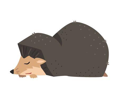 Cute Hedgehog Sleeping, Adorable Prickly Wild Forest Animal Cartoon Character Vector Illustration