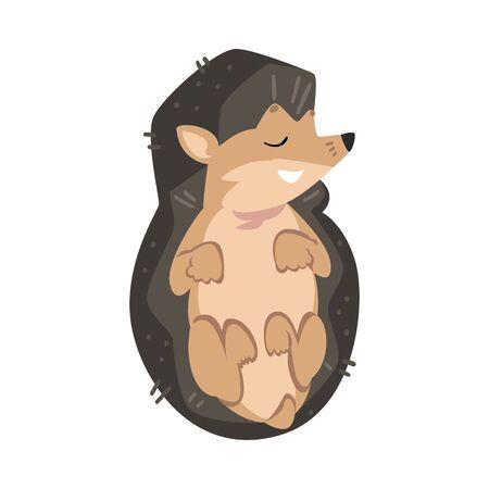 Cute Sleeping Hedgehog, Lovely Wild Forest Animal Cartoon Character Vector Illustration Ilustrace