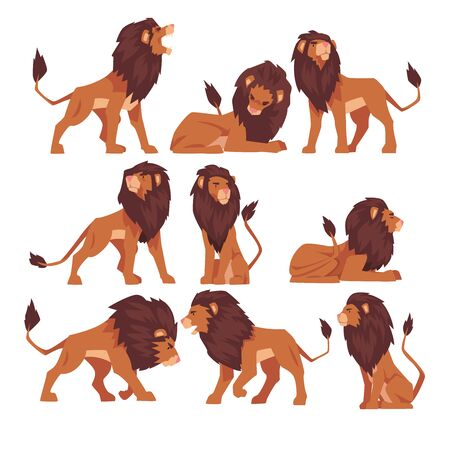 Proud Powerful Lion Collection, Mammal Wild Cat Jungle Animal in Various Poses Vector Illustration