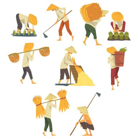 Asian Farmers in Straw Conical Hats Working on Field, Peasants Characters Planting and Harvesting Rice Cartoon Style Vector Illustration Ilustrace