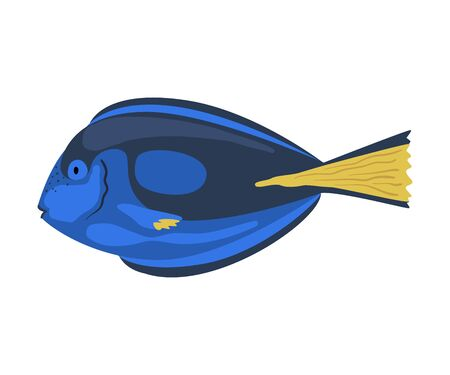 Regal Tang Fish, Marine Life Element, Sea or Ocean Creature Vector Illustration Ilustração