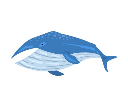 Whale Mammal Animal, Marine Life Element, Sea or Ocean Creature Vector Illustration