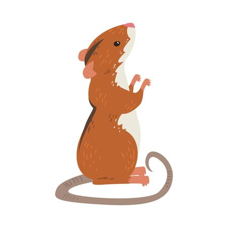 Field Mouse Standing on Hind Legs, Red Rodent Animal with Black Stripe on Its Back Vector Illustration