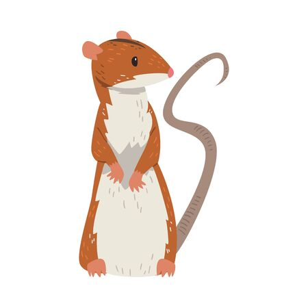 Field Mouse Standing on Hind Legs, Red Rodent Animal Vector Illustration