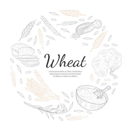 Wheat Organic Product Banner Template, Agricultural Plants and Baked Products of Round Shape, Bakeshop, Cafe, Packaging, Menu Design Hand Drawn Vector Illustration Vecteurs