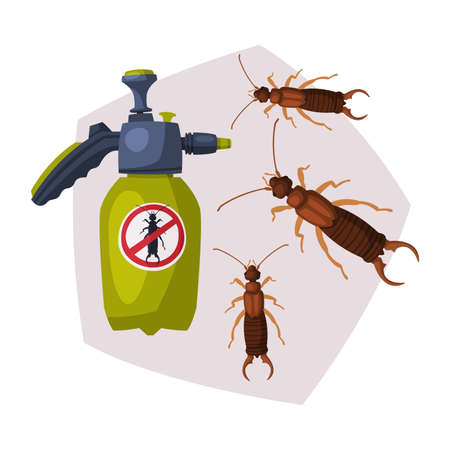 Sprayer Bottle of Diplura Harmful Insect Insecticide, Pest Control Service, Detecting and Exterminating Insects Vector Illustration