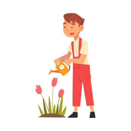 Cute Boy Watering Tulip Flowers in the Garden with Watering Can Vector Illustration on White Background. 일러스트