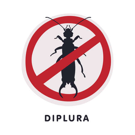 Diplura Harmful Insect Prohibition Sign, Pest Control and Extermination Service Vector Illustration Isolated on White Background. Ilustração