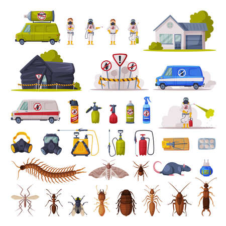 Home Pest Control Service Set, Exterminating and Protecting Equipment, Harmful Insects Vector Illustration, Web Design.