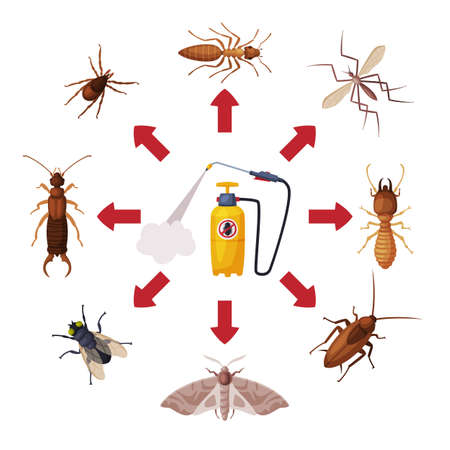 Pest Control Service, Pressure Sprayer of Chemical Insecticide and Harmful Insects Vector Illustration