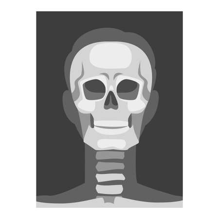 X-ray Film of Front Viewed Skull Vector Illustrated Image for Educational Purpose