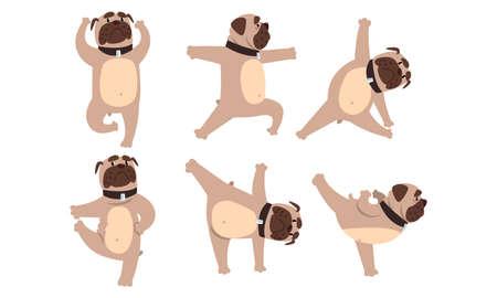 Funny French Bulldog Doing Sports Set, Cute Dog Performing Different Yoga Poses Cartoon Style Vector Illustration Vektoros illusztráció