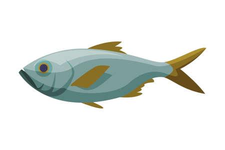 Bream Freshwater Fish, Fresh Aquatic Fish Species Cartoon Vector Illustration