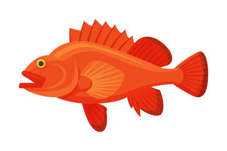 Sea Perch Fish, Fresh Aquatic Sea Fish Species Cartoon Vector Illustration
