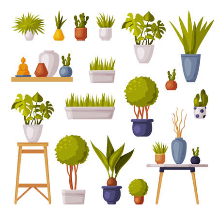 Houseplants Collection, Potted Plants and Vases for Office, Room Decoration Cartoon Style Vector Illustration on White Background