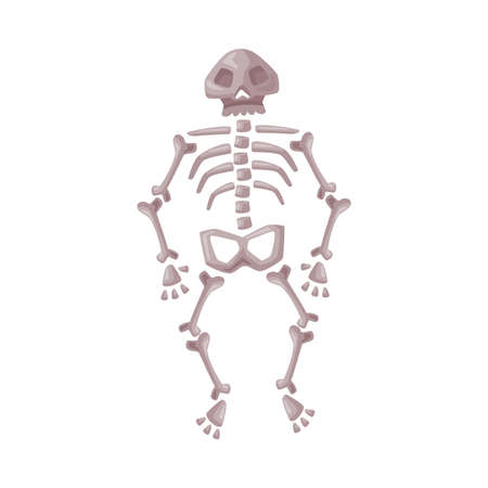 Human Skeleton, Happy Halloween Object Cartoon Style Vector Illustration on White Background Ilustrace