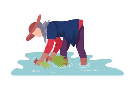 Asian Female Farmer in Gloves Setting Rice Plant Vector Illustration