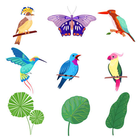 Tropical Leaves, Birds and Butterflies as Exotic Flora and Fauna Vector Set Ilustração