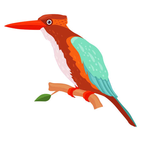 Tropical Bird with Bright Feathers Sitting on Tree Branch Vector Illustration