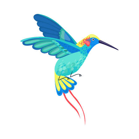 Hummingbird with Bright Feathers Hovering Vector Illustration