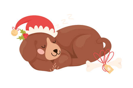 Cute Dog Pet in Red Hat Curled up and Sleeping with Gift Bone Rested Nearby Vector Illustration