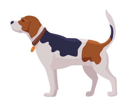 Hunting Dog, Scent Hound Breed Flat Vector Illustration