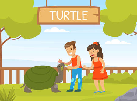 Children Playing with Turtle on Green Lawn, Boy and Girl Interacting with Animal in Petting Zoo Cartoon Vector Illustration