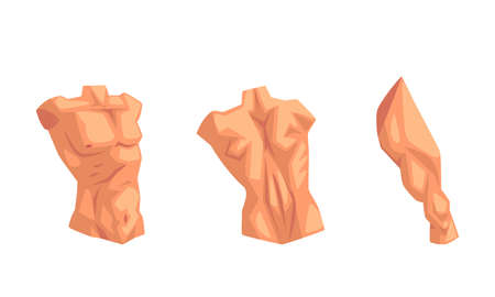 Body Parts with Torso and Muscled Leg Vector Set Vettoriali