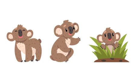 Adorable Koalas Set, Cute Australian Animals Vector Illustration on White Background