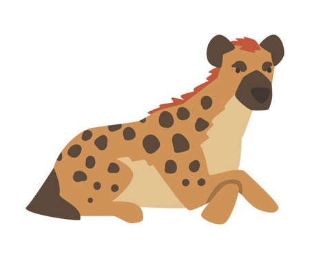 Hyena as Carnivore Mammal with Spotted Coat and Rounded Ears Sitting Vector Illustration