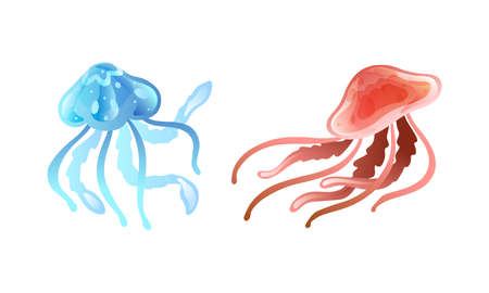 Jellyfish and Sea Jelly as Free-swimming Marine Animal with Umbrella-shaped Bells and Trailing Tentacles Vector Set Ilustracja