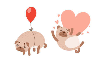 Funny Pug Dog with Curled Tail and Light Brown Coat with Heart and Balloon Vector Set