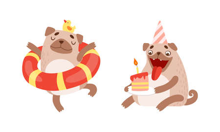 Funny Pug Dog with Curled Tail and Light Brown Coat in Rubber Ring and Eating Birthday Cake Vector Set