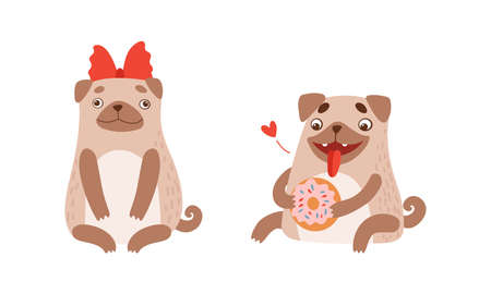 Funny Pug Dog with Curled Tail and Light Brown Coat with Donut and Bow Vector Set