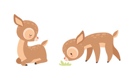 Cute Baby Deer with Spots as Adorable Hoofed Mammal Sitting and Smelling Grass Vector Set