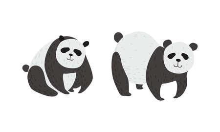 Panda Bear with Black-and-white Coat and Rotund Body Vector Set Ilustracja