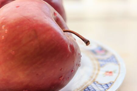 apple Stock Photo - 16959740