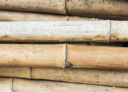 Bamboo Stock Photo - 18025779
